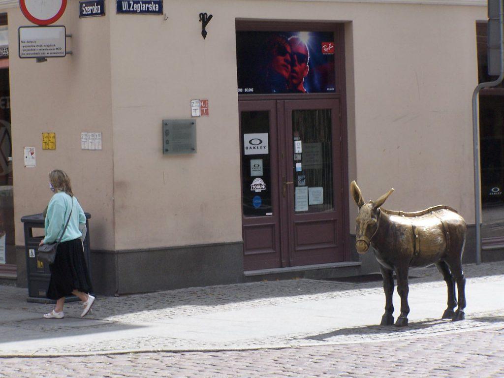 Rzeźba osiołka Toruń